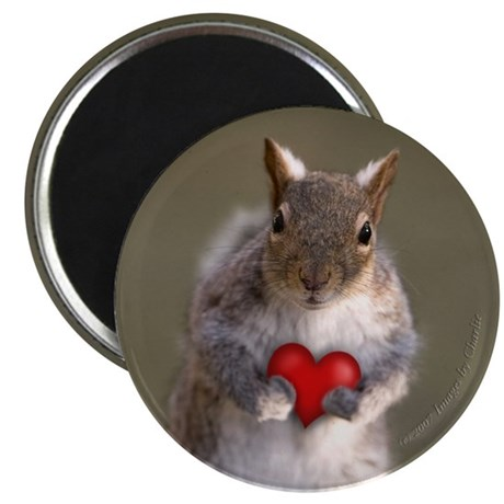 Squirrel Lovers Round Magnet - Cute