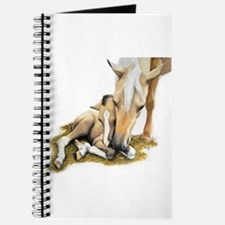Palomino, Mare, buckskin, foa Journal