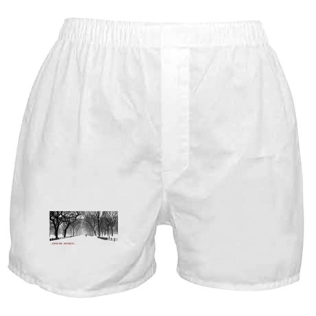 Central Park, NYC Boxer Shorts