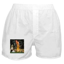 Midsummer's Eve & 4 dogs Boxer Shorts