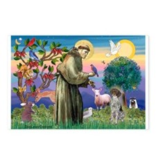 St Francis / German SH Pointer Postcards (Package