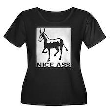 Nice Ass T
