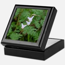 Dutchman's Breeches, Keepsake Box