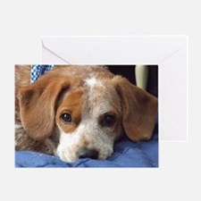 Thinking of You Beagle Mix Greeting Card