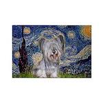 Starry / Skye #3 Rectangle Magnet (10 pack)