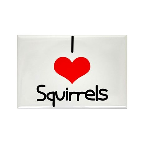 I Love (heart) Squirrels Rectangle Magnet