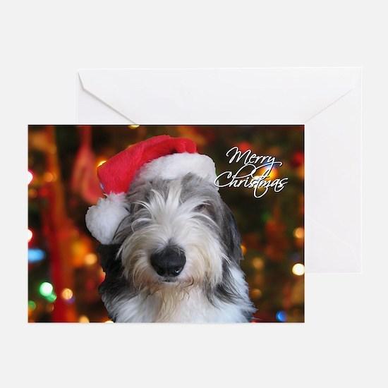 Old English Sheepdog Christmas Cards (Pk of 20)