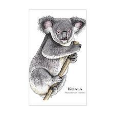 Koala Rectangle Stickers
