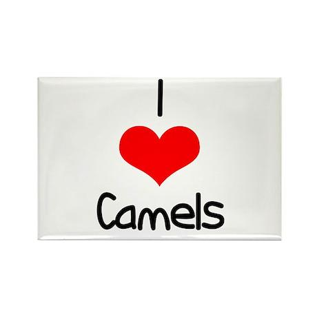 I Love (heart) Camels Rectangle Magnet (100 pack)