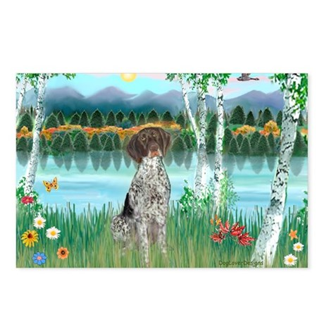 Birches / Ger SH Pointer Postcards (Package of 8)