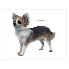 Chihuahua Dog Posters