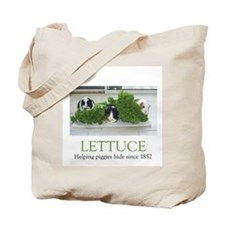 Piggies hiding in lettuce tote