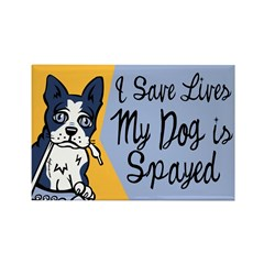 My Dog Is Spayed Rectangle Magnet (10 pack)