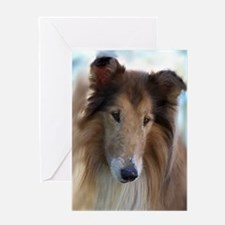 Rough Collie Art Greeting Card