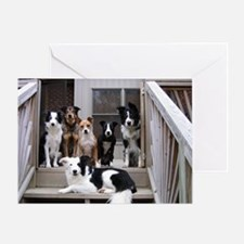 Unique Racing dogs Greeting Card