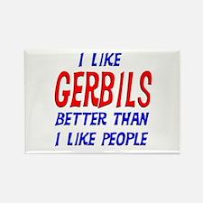 I Like Gerbils Rectangle Magnet (10 pack)