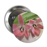"Pink Tulips In Bloom 2.25"" Button (100 pack)"