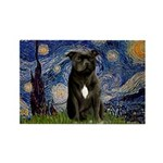 Starry-Am.Staffordshire (blk) Rectangle Magnet (10