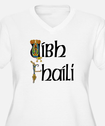 Offaly (Gaelic) T-Shirt