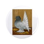 Indian Fantail Pigeon 3.5