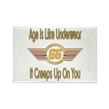 Funny 66th Birthday Rectangle Magnet (100 pack)