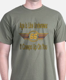 Funny 66th Birthday T-Shirt
