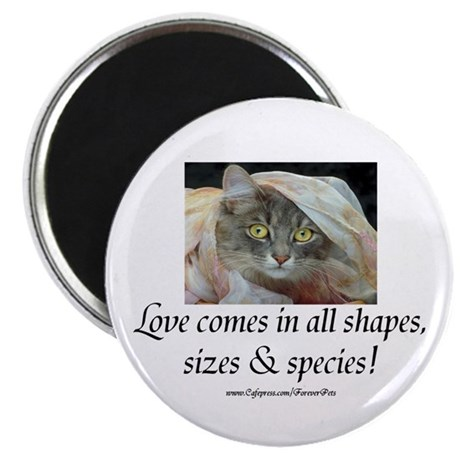"Love Comes (cat) 2.25"" Magnet (10 pack)"