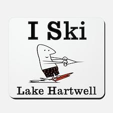 I Ski Mousepad