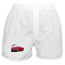 The 100 Boxer Shorts