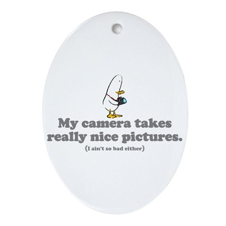 WTD: My camera takes... Oval Ornament