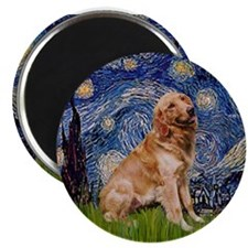 Starry / Golden (B) Magnet