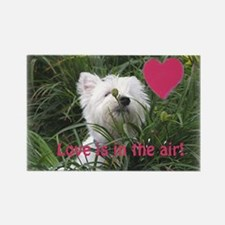 """Love is in the Air"" Westie Rectangle Magnet"