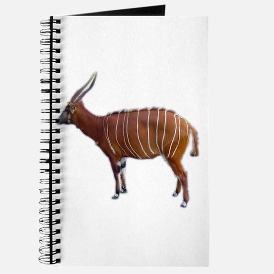 bongo cutout Journal