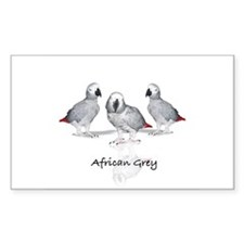 african grey parrot Rectangle Decal