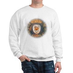Star Burst Sweatshirt