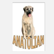 Anatolian Postcards (Package of 8)