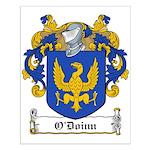 O'Doinn Family Crest Small Poster