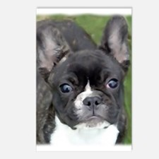 Funny Brindle french bulldog Postcards (Package of 8)