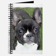 Unique Brindle french bulldog Journal