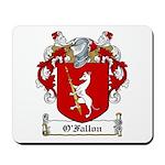 O'Fallon Family Crests Mousepad