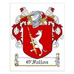 O'Fallon Family Crests Small Poster