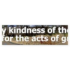 Kindness Panoramic Bumper Sticker 3 of 5 (Bumper)