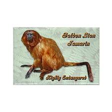 Golden Lion Tamarin Rectangle Magnet