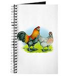 Ameraucana Chickens Journal