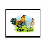 Ameraucana Chickens Framed Panel Print