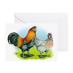 Ameraucana Chickens Greeting Cards (Pk of 10)