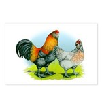 Ameraucana Chickens Postcards (Package of 8)