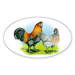 Ameraucana Chickens Oval Sticker