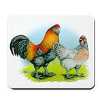 Ameraucana Chickens Mousepad