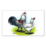 Ameraucana Rooster and Hen Rectangle Sticker
